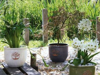 DEROMA France - kasa - Blumenkübel