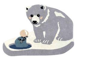 MAISON S - orso - Kinderteppich