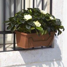 Nicoli -  - Balkonkasten