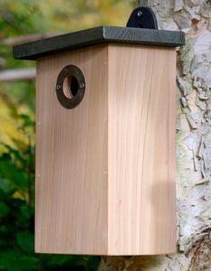 Wildlife world -  - Vogelhäuschen