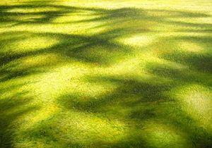 MANUEL CANCEL - shadow - Zeitgenössische Gemälde