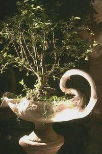 Vase Design -  - Sockelvase