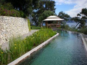 ATELIER NELUMBO -  - Schwimmbecken