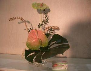 Asian-Decoration - ventouse - Blumenhalter