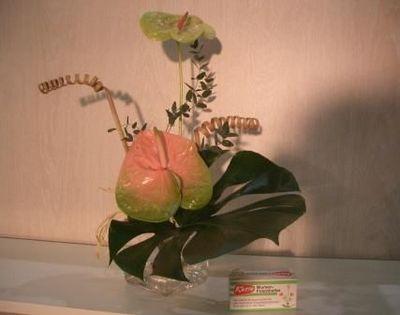 Asian-Decoration - Blumenhalter-Asian-Decoration-ventouse
