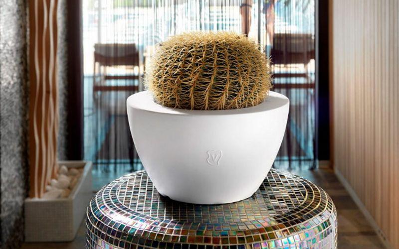 Lyxo by Veca Jardinera de interior Objetos decorativos varios Objetos decorativos  |