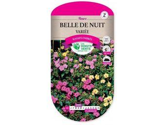 LES DOIGTS VERTS - semence belle de nuit variée - Semilla