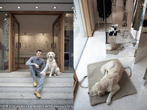 CLOUD 7 -  - Cama Para Perro