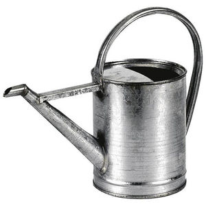 Aubry-Gaspard - arrosoir 3 litres en zinc 39x15x29cm - Regadera