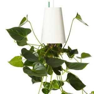 BOSKKE -  - Jardinera Colgante
