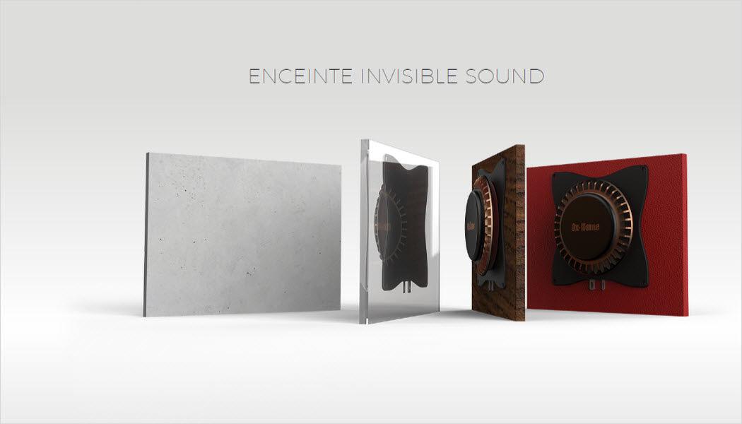 OX-HOME Altoparlanti invisibile Hi-fi e audio High-tech   