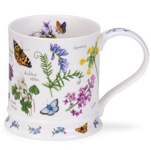 Dunoon - nectar vetch - Tazza