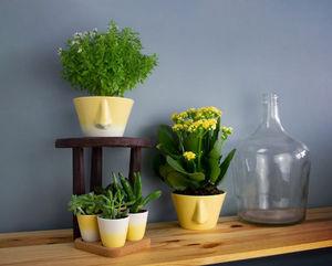 DEDAL - naso 2.0 - Vaso Per Fiori