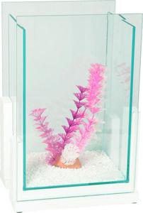 ZOLUX - aquarium bamboo style blanc 5,6 litres 21x15,5x31, - Acquario