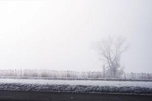 Beware - on the road - Fotografia