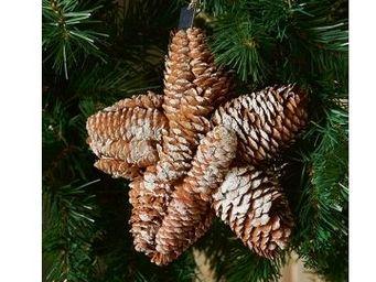 Riviera Maison - pinecone big star - Decorazione Per Albero Di Natale
