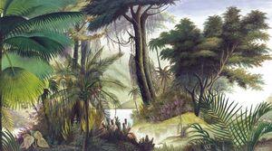 Ananbô - les sources de l'orénoque-- - Carta Da Parati Panoramica