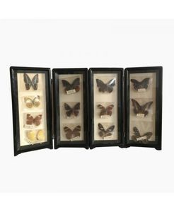 VIDE DECO -  - Farfalla